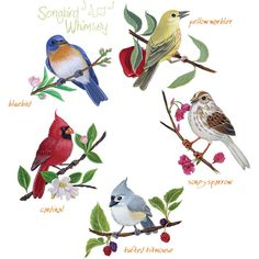 illustration of whimsical birds | Christina Wald :: Illustrator