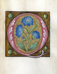 005-Leaf from Alphabet Book- The Art Walters Museum