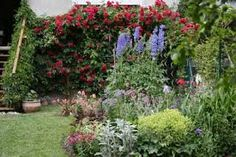 Image result for plant a garden for wildlife