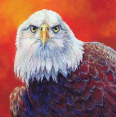 American Icon - pastel eagle painting - click to see larger image Watercolor Animals, Watercolor Art, Eagle Painting, Bird Feathers, Eagles, Larger, Maine, Creatures, Pastel