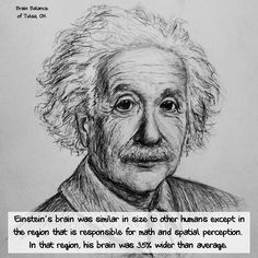 #Einstein's #brain was similar in size to other humans except in the region that is responsible for #math and spatial perception. In that region, his brain was 35% wider than average. #Genius #Fact #BrainBalance #AddressTheCause