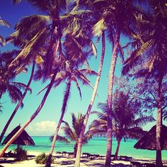 the perfect beachday