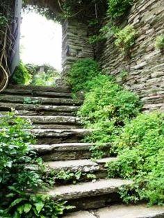 cottage garden steps - Google zoeken