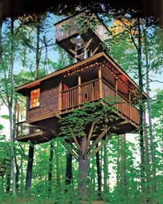 """Treehouse And A Half""--Built over time by elaborating on a simple platform--Two DIY enthusiasts crafted small comfy guest cabin w/ ""observatory/hideaway"" above ..."