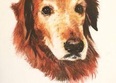 Pet portrait golden retriever watercolor painting