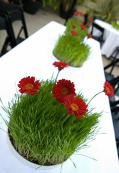 Whimsical centerpiece with wheatgrass and red gerbera daisies
