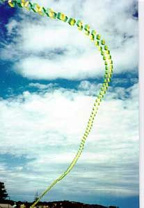 101 Box kites, in Australia's green and yellow national colors!