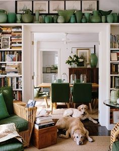 green vase collection on top of bookcases