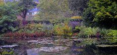 Monet's Garden | NYBG