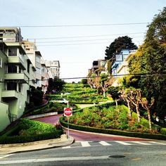 Discover what it's like go down Lombard Street, with all of its twists and turns.