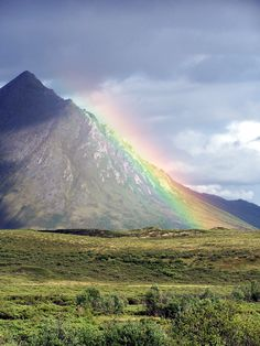 Rainbow sits on Dempster Highway on the way to Inuvik, NWT