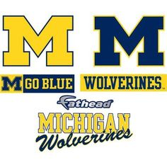 Fathead Michigan Teammate Logo Assortment, Multicolor