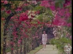Gardens of the World with Audrey Hepburn. Such a beautiful lady who had such grace and kindness.