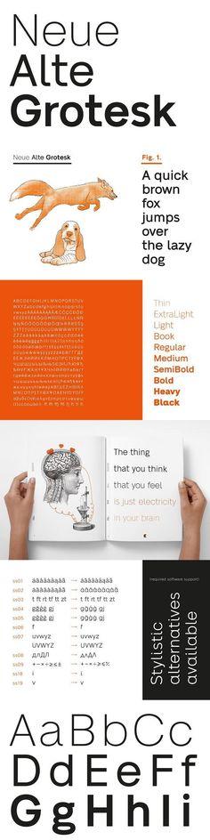 A modern interpretation of classic sans-serif fonts. Stylistic sets with alternate glyphs. Suitable for branding. Sans Serif Fonts, Typography Fonts, Typography Design, Typography Alphabet, Font Design, Graphic Design, Cool Fonts, Glyphs, Alter