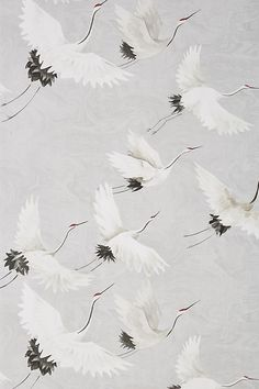 Products Windsong Crane Wallpaper by Anthropologie in Grey, Wall Decor Sauna Room Packages Make Cons Graphic Wallpaper, Bird Wallpaper, Nursery Wallpaper, Pattern Wallpaper, Wallpaper Backgrounds, Wallpapers, Classic Wallpaper, Grey Wallpaper, Wallpaper Decor