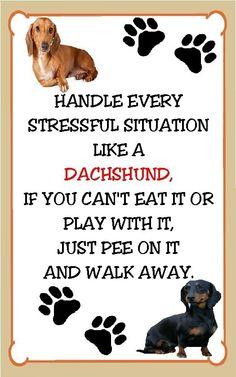 Handling stress!