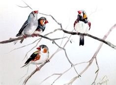Zebra Finches original watercolor painting 12 X 16 by ORIGINALONLY, $38.00