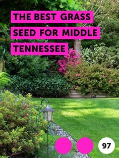 The Best Grass Seed for Middle Tennessee. Tennessee falls into what the U.S. Department of Agriculture defines as a transition zone in terms of its grass hardiness. This means both warm- and cold-season grasses can grow in the state. Warm-season grasses are recommended for the lower elevations in the middle part of the state, while the cool-season...