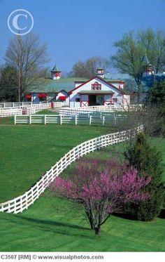 Horse Barns at Summer Wind Farm in KY