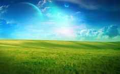 grasslands - Bing Images
