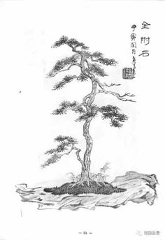 Picture Illustration, Bonsai Tree Tattoos, Landscape Paintings, Tree Sketches, Japanese Drawings, Japanese Tree