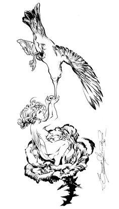 Colibri by eDufRancisco