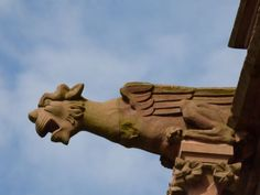 Drachen am Schloß Drachenburg, Foto: S. Hopp