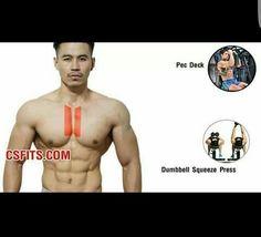 Inner chest
