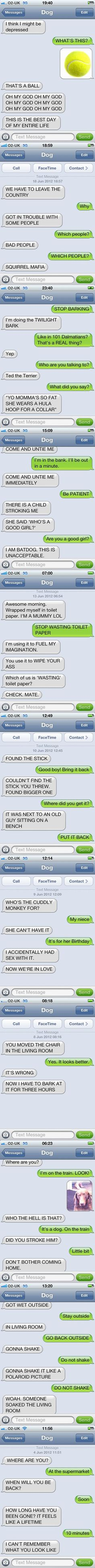 Text from dog- literally had me laughing out loud