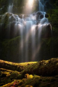 Proxy Falls, Proxy Creek, Willamette National Forest, Oregon, USA.I want to go see this place one day.Please check out my website thanks. www.photopix.co.nz