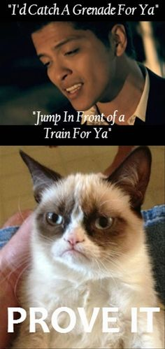 i would catch a grenade for you, jump in front of a train for you, grumpy cat, funny pictures