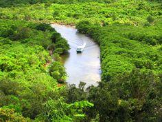 西表島では二番目に大きい川。流域には日本最大規模のマングローブ林が広がっており、川流域は国の天然記念物に指定。中流には、サキシマスオウノキがあり、遊覧ボートが運行する。