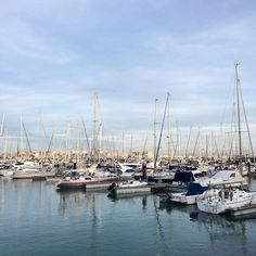 x 1000 #fashionsouth #cadiz #sur #sailing #sailingteam #puertosherry #sunnyday #january #picoftheday #andalucia by gloriagdleon