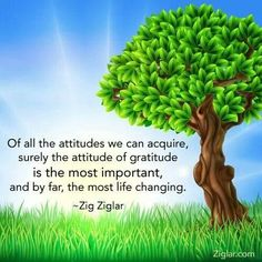 Attitude of Gratitude What is Gratitude and What Is Its Role in Positive Psychology