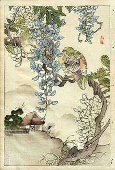 Антикварные японские гравюры. Работы японского художника Kono Bairei из серии «Птицы и цветы» . Обсуждение на LiveInternet - Российский Сервис Онлайн-Дневников