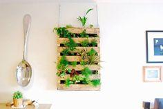 mur plantes interieur suspendu moderne
