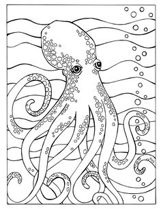 fortuna coloring book octopus page - Octopus Coloring Pages