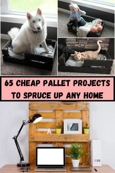 We've pulled together our favorite pallet projects to give you some inspiration. These tutorials will help you spruce up your home with lots of great projects. You can build furniture, organization pieces, and even art. Here are 65 cheap pallet projects to spruce up any home:
