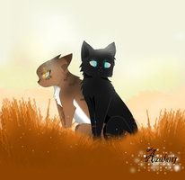Crowfeather and Leafpool. I just finished Twilight the new prophecy!!!! Awesome. CROWFEATHER AND HAWKFROST ARE AWESOME!!!!!!!!!