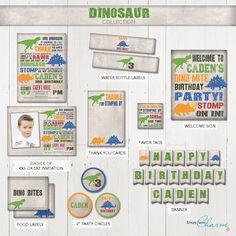 Dinosaur Party Package Dinosaur Birthday Invitation Dinosaur