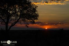 The guests enjoyed watching the African sun set behind the Drakensberg mountains Freedom Day South Africa, Private Games, Famous Words, Game Reserve, Safari, African, Adventure, Mountains, Sunset
