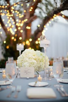 love ! candles , hydrangeas & the beautiful tree w/fairy lights in the background .