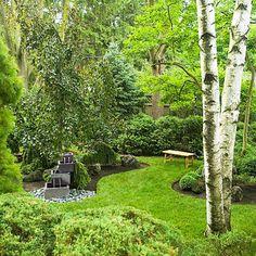 Pretty yard with birch tree