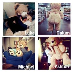 """""""5sos preferences // The Giant Teddy Bear He Gets You"""" by daltonsprincess ❤ liked on Polyvore featuring beauty"""