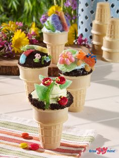 Bug Cones: Another way to help our environment is to cut down on paper, so the cupcakes are baked in Ice Cream Cones. For the Cupcake Cones, I used a Duncan Hines Devil's Food Cake Mix and added the ingredients to make it taste more like homemade, and then baked them in Ice Cream Cones using the easy method of baking them upside down. Any candy or cookies you have will work.  Recipe: https://joyconecorecipeblog.wordpress.com/2015/07/21/bug-cones/