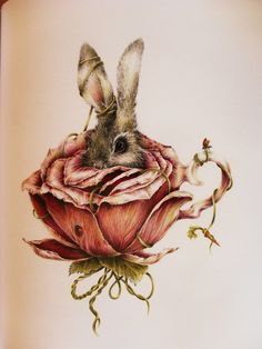 bunny in the rose teacup......would look good in little girls room!