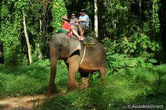 Phuket Eco Safari