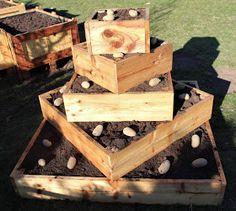 Bauanleitung für eine Kartoffelpyramide / Erdäpfelpyramide. Platzsparender Anbau von Kartoffeln