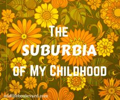 "The (1) I'm up over at Midlife Boulevard today! Take a trip down memory lane with me….""The Suburbia of My Childhood.""  You can check it out here: http://midlifeboulevard.com/suburbia-childhood-baby-boomer/"