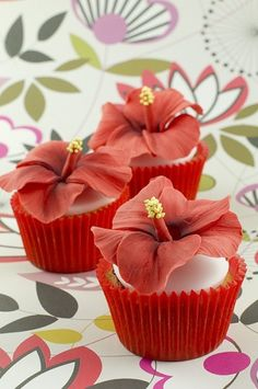 edible hibiscus flowers on cupcakes